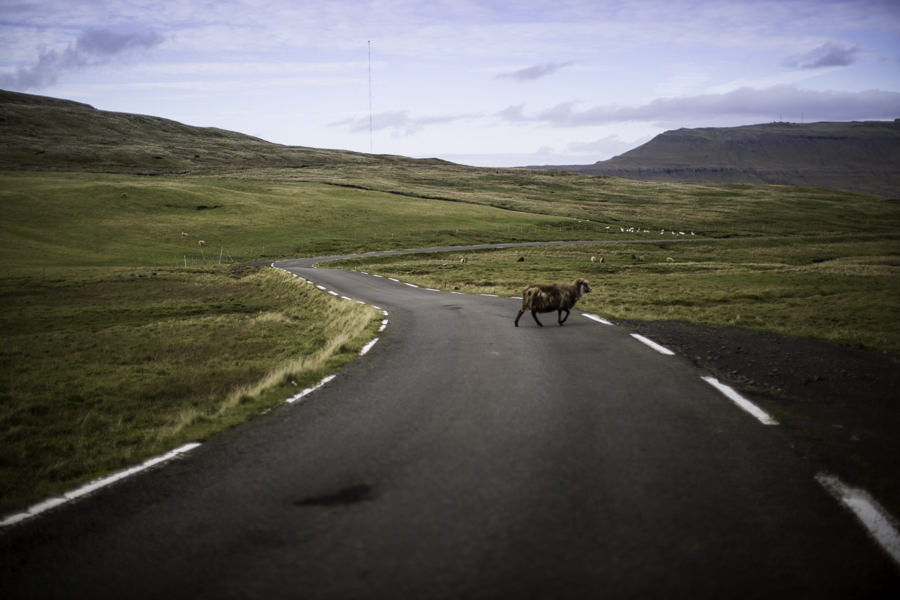 Isole Faroe | A Gipsy in the Kitchen