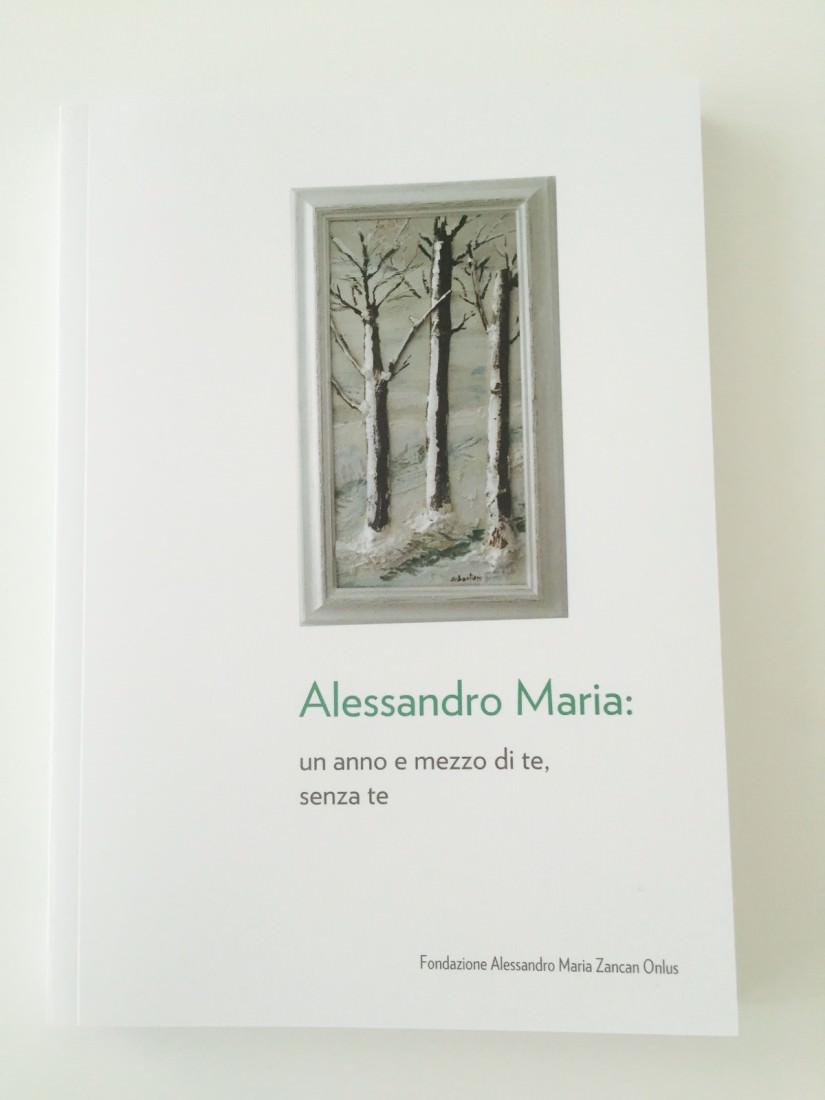 foto_libro_AlessandroMariaUnAnnoeMezzodiTeSenzaTe_GrandeAleOnlus3