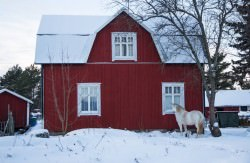 Un viaggio in Finlandia - Isole Aland | A Gipsy in the Kitchen