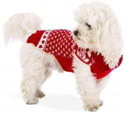ferplast | Il maglione di Natale perfetto | A Gipsy in the Kitchen