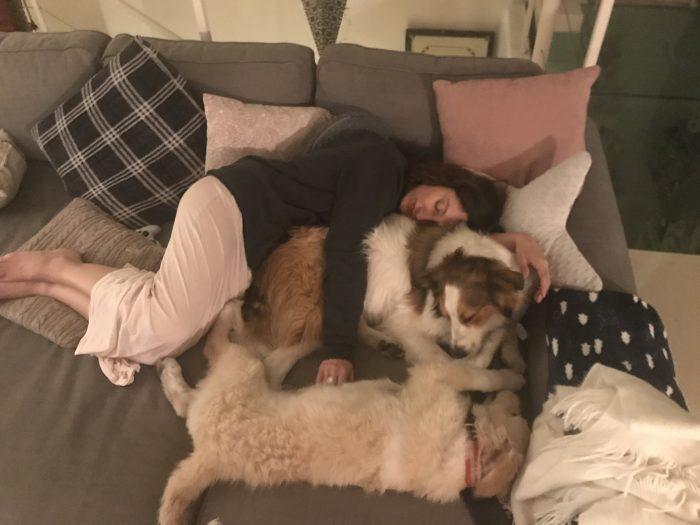 Le avventure di Brie e Baku | A Gipsy in the Kitchen