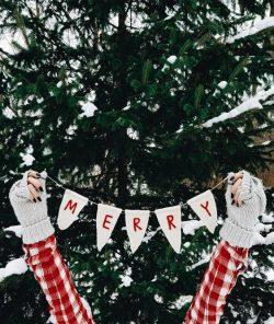 Caro Babbo Natale, Serena vorrebbe   A Gipsy in the Kitchen