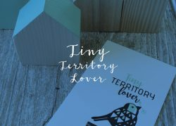 tiny territory lover a gipsy in the kitchen
